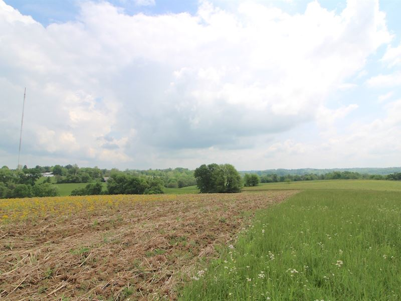 Lutz Lane, 173 Acres : Zanesville : Muskingum County : Ohio