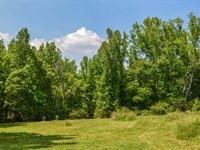 12 Ac. Wooded Home Site Spartanburg : Spartanburg : Spartanburg County : South Carolina