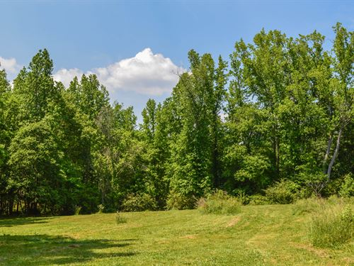 12 Ac. Wooded Home Site Spartanburg : Spartanburg : South Carolina