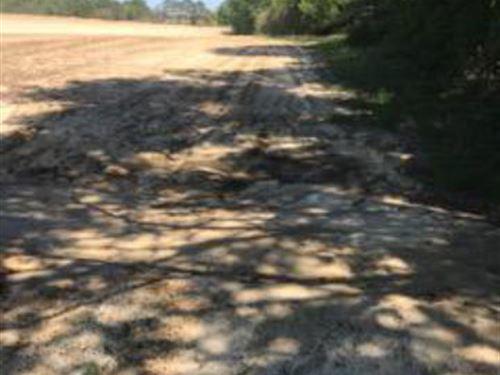 Nice Open Land : Cottonwood : Houston County : Alabama