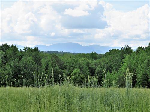 Farmer's Paradise : Campobello : Spartanburg County : South Carolina