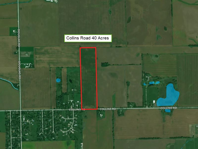 40 Acres Collins Rd : Oswego : Kendall County : Illinois
