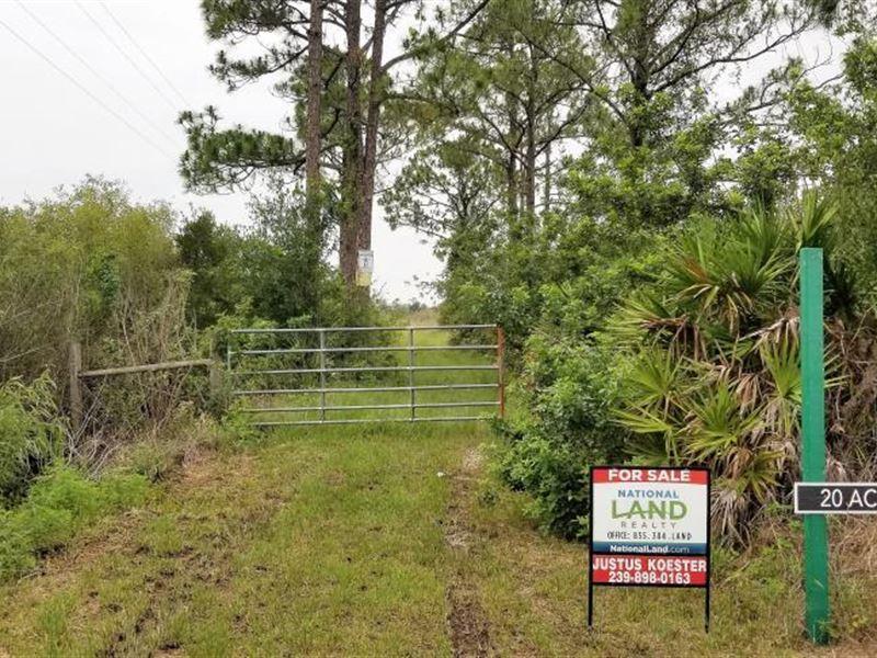 20 Acres Off State Road 31 Mobile : Punta Gorda : Charlotte County : Florida
