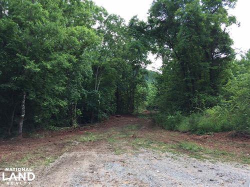 Clayton Road Homesite, Recreational : Springville : Jefferson County : Alabama