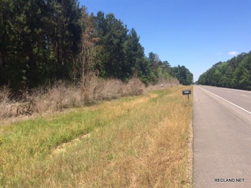 13.1 Ac - Wooded Tract For Home Sit : Deville : Rapides Parish : Louisiana