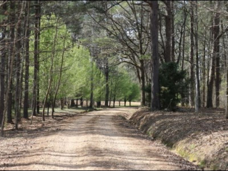 7.4 Acres In Neshoba County : Philadelphia : Neshoba County : Mississippi