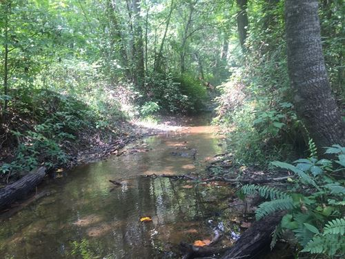 134 Acres On Turkey Creek : Honea Path : Abbeville County : South Carolina