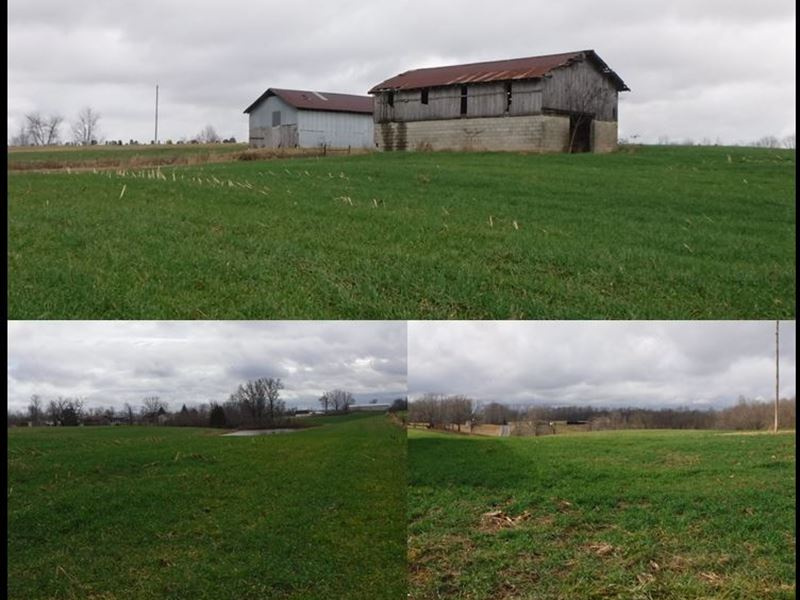 45.04 Ac, Home, Pole Barn, 2 Barns : Red Boiling Springs : Clay County : Tennessee