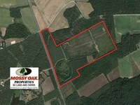 110 Acres of Recreational Land For : Rembert : Kershaw County : South Carolina