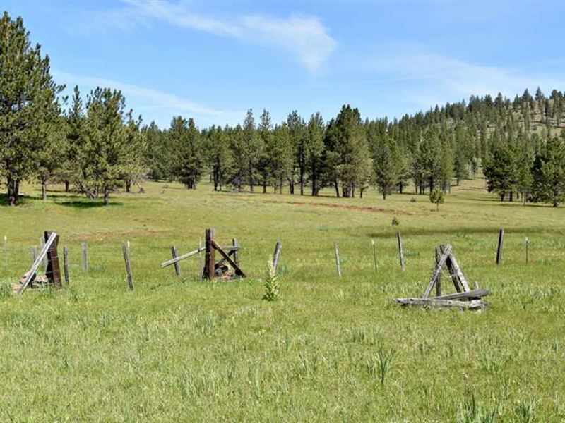 235 Acres on Shingle Mill Butte : Heppner : Morrow County : Oregon