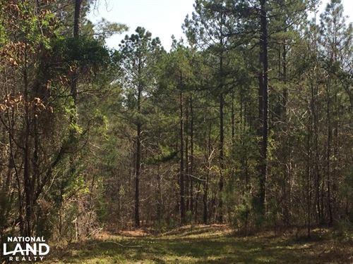 Lancaster Timber Farm And Hunting : Lancaster : South Carolina