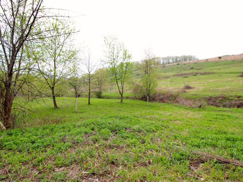 17 Acres Of Land : Benton : Columbia County : Pennsylvania
