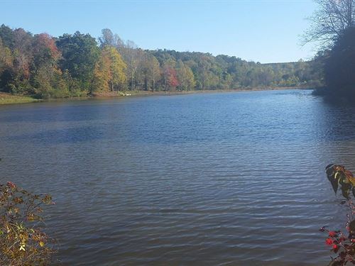 Beautiful Private Lake With Cottage : Pittsville : Pittsylvania County : Virginia
