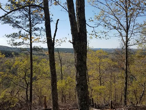 Jett Mountain Tract 80+/- Acres : Ashland : Clay County : Alabama
