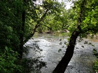 60 Smilax Road/River Front Property : Pittsboro : Chatham County : North Carolina