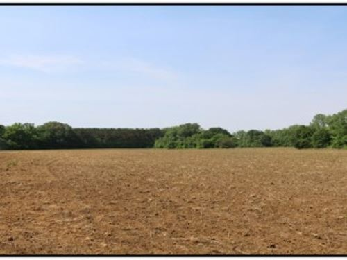 48 Acres In Tallahatchie County In : Oakland : Tallahatchie County : Mississippi
