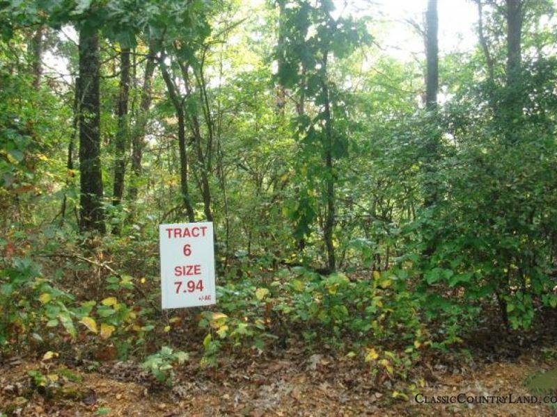 Incredible Sugartree Falls 6 : Waynesboro : Wayne County : Tennessee