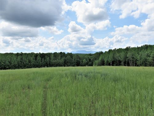 Farmer's Paradise Tract B : Campobello : Spartanburg County : South Carolina