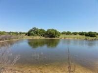 El Halcon Tract 2 : Early : Brown County : Texas