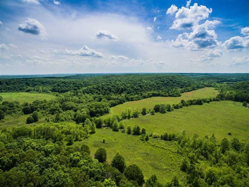 310 Acre Farm For Sale in Wayne Co : Wappapello : Wayne County : Missouri