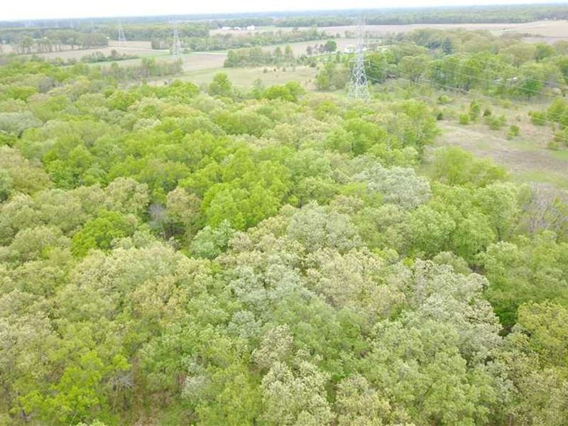 Starke County, IN 38 Acre Property : Knox : Starke County : Indiana