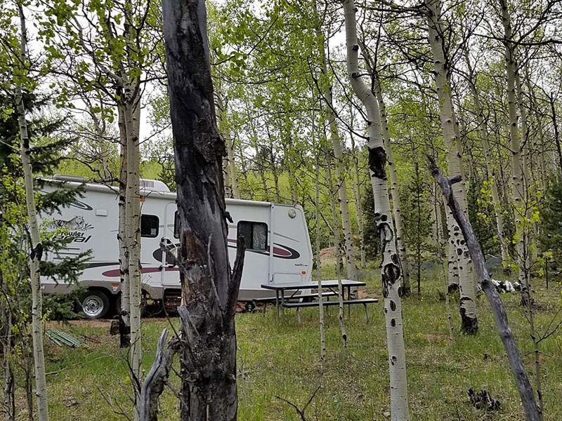 5 Acres Of Mountain Beauty : Cripple Creek : Teller County : Colorado