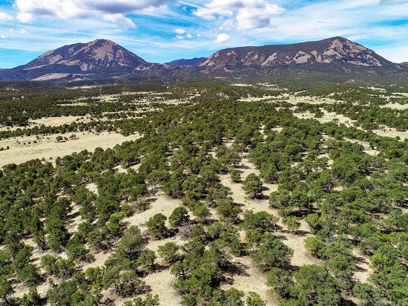 Wooded Homesite With Electricity : Walsenburg : Huerfano County : Colorado