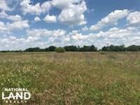 20 Acres Kaufman County, Pasture : Mabank : Kaufman County : Texas
