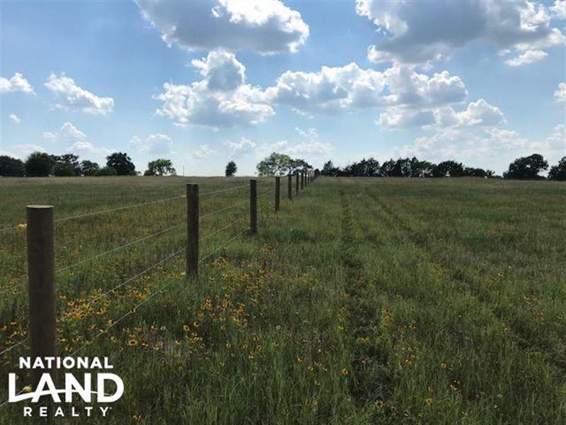 17.5 Acres, Rolling, Pasture, Timbe : Mabank : Van Zandt County : Texas