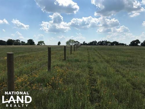 17.5 Acres, Rolling, Pasture, Timbe : Mabank : Van Zandt County : Texas