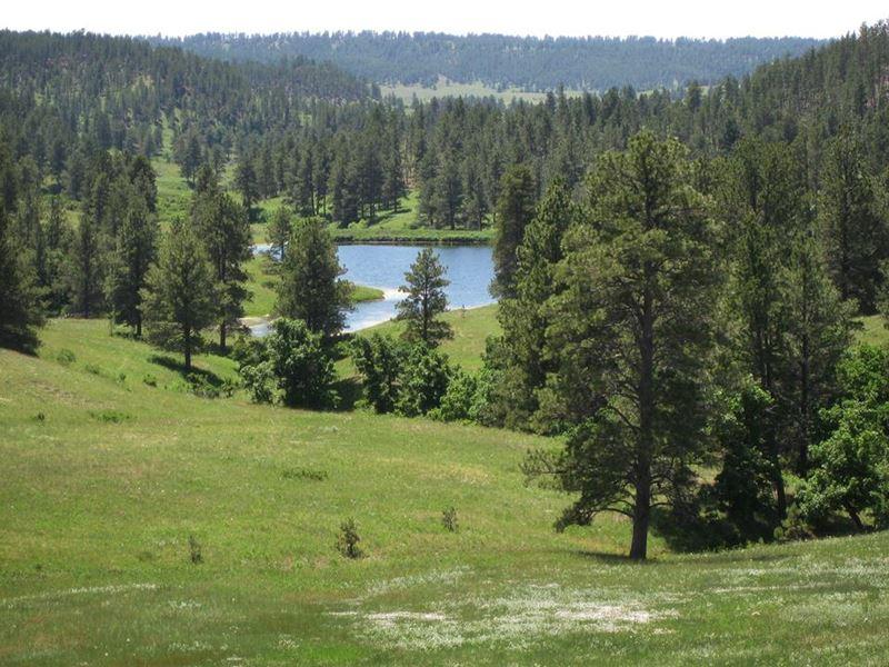 Spring Creek Ranch : Sundance : Crook County : Wyoming