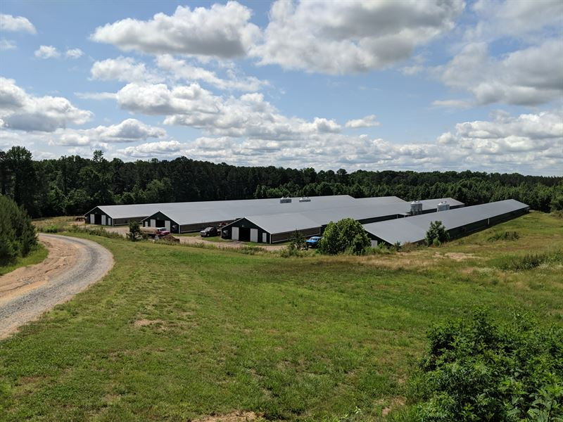Sold-Timber Ranch Poultry Farm : Chatsworth : Murray County : Georgia