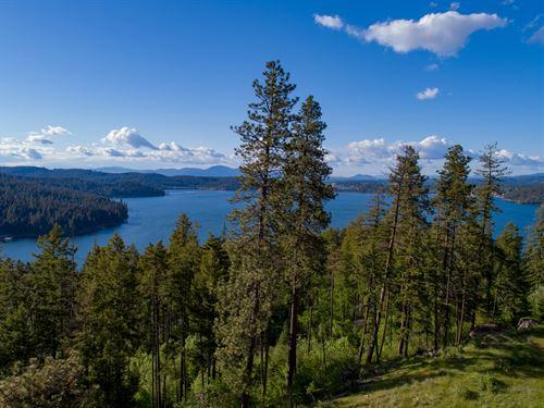 North Cape Rd : Coeur D'alene : Kootenai County : Idaho