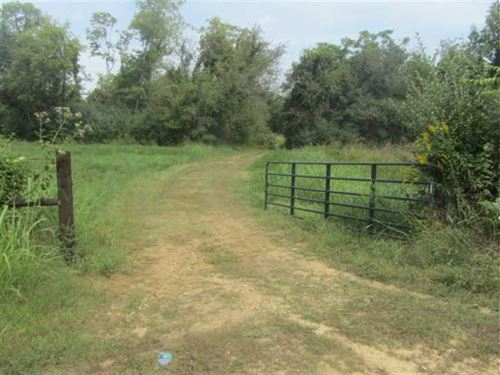 126 Acre Tract in Columbia, TN : Columbia : Maury County : Tennessee