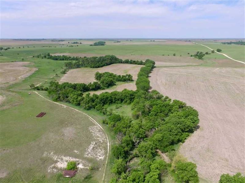 150 Acres of Hunting And Tilla : Luray : Russell County : Kansas