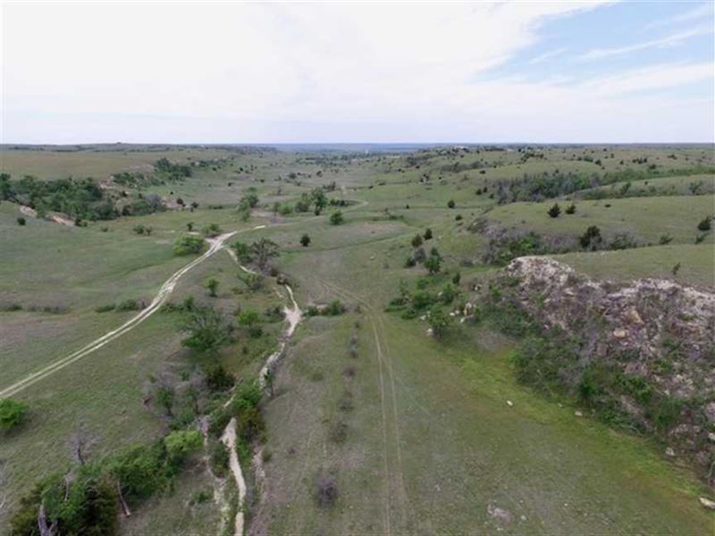 400 Acres of Pasture And Hunti : Codell : Rooks County : Kansas