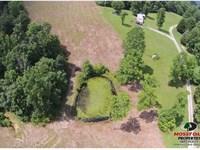Tracts 1 & 2 - 54.35 Acres : Breeding : Metcalfe County : Kentucky