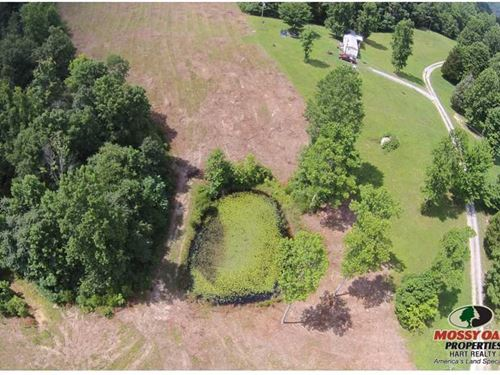 Tracts 1 & 2 - 54.35 Acres : Breeding : Metcalfe County : Kentucky