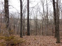 Reduced, Country Home And 110 Acre : Galena : Stone County : Missouri