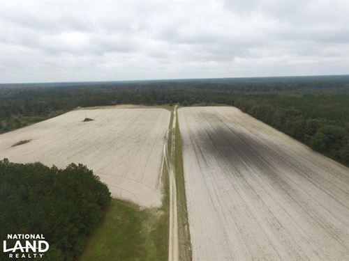 Falling Leaves Homesite : Roseboro : Sampson County : North Carolina