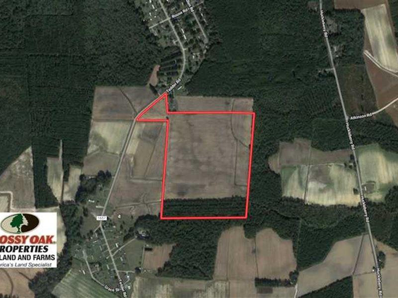 Reduced, 56.3 Acres of Farm And : Lucama : Wilson County : North Carolina