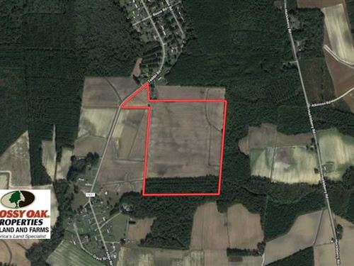 Reduced, 56.3 Acres of Farm And : Lucama : Wilson County : North Carolina