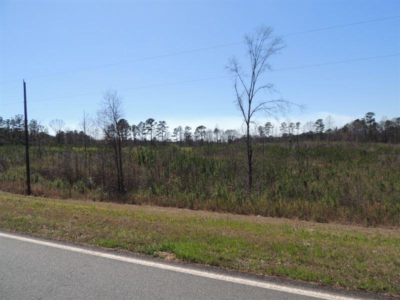 6.96 Ac Lone Oak Road : Greenville : Meriwether County : Georgia