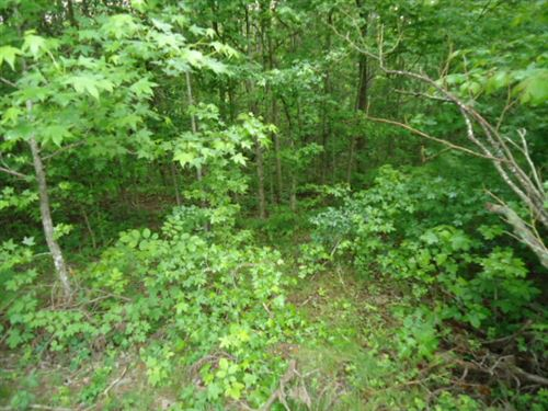 7.92 Surveyed Acres, Seller Terms : Celina : Clay County : Tennessee
