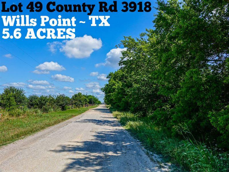 5.6 Acres In Van Zandt County : Wills Point : Van Zandt County : Texas