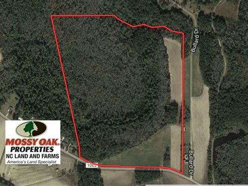 75 Acres of Farm And Timber Land : Whiteville : Columbus County : North Carolina