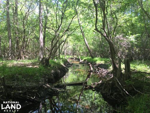 Lugoff Homesite And Hunting With St : Lugoff : Kershaw County : South Carolina