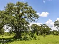 Live Oak Creek Ranch : Cistern : Fayette County : Texas