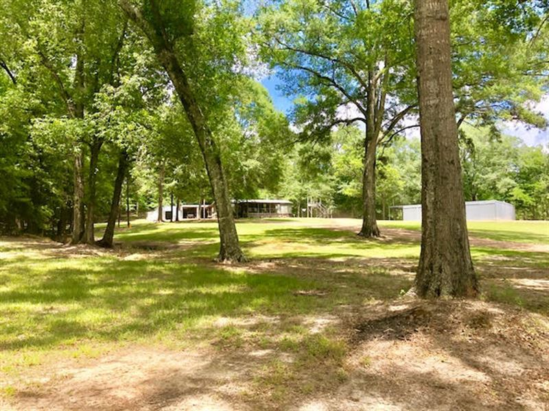 Secluded Hunting Paradise, By Hnf : Roxie : Franklin County : Mississippi