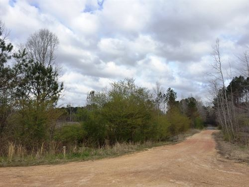 Pennington Circle South : Nauvoo : Walker County : Alabama